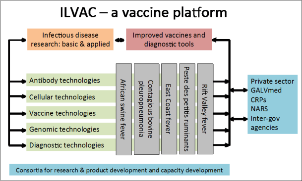 ILVAC - a vaccine platform